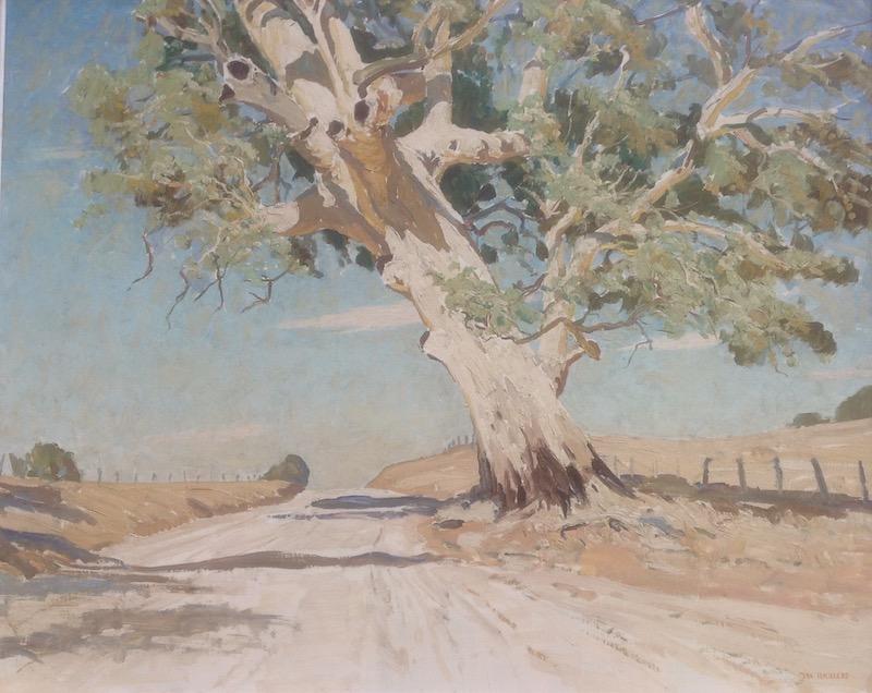 Max Ragless Gum, Flinders Ranges