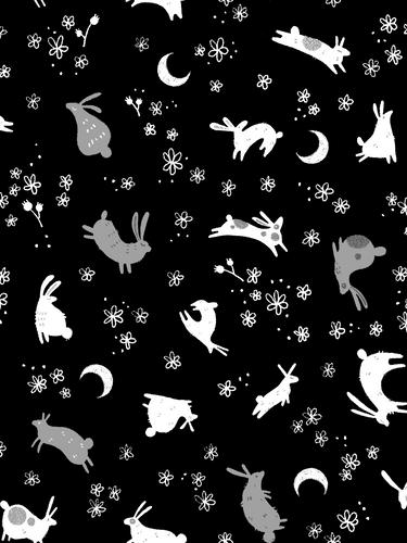Rabbits and Moons