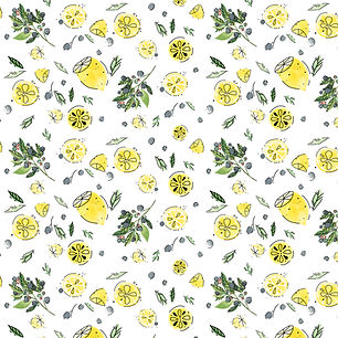 lemonslicesandblurberries.jpg