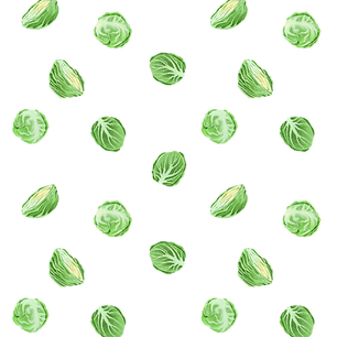 brussel_sprout_redbubble.png