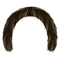 movember2018-horseshoe.png