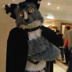 Zom fullsuit fursuit wabbit wolf rabbit ears navy grey white fursuit Furry tailor Mipsy