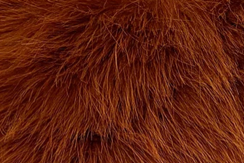 Classic Rust Howl Fox - Half Yard Piece