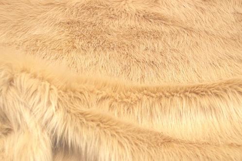 Lioness Beige