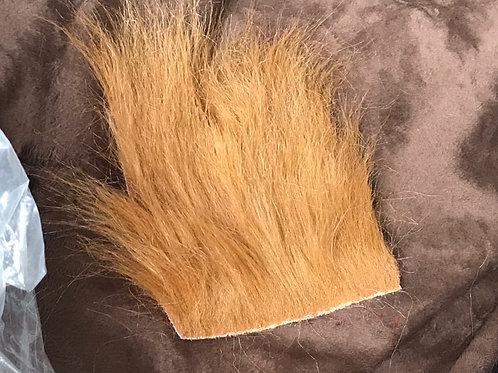 Rust Fox