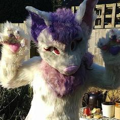 bat toony fursuit fullsuit pink purple airbrushing eyelids plantigrade