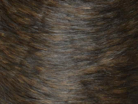 Timber Brown Realistic