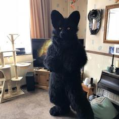 black wolf full fursuit digitigrade pose