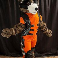Rocket raccoon fullsuit costume cosplay fursuit plantigrade orange black brown white