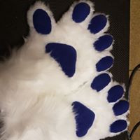 white hand paws handpaws with blue fleece pads