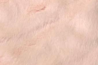 Howl bunny - Pastel Pink