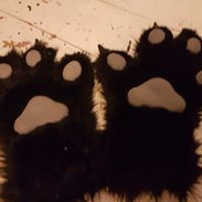 black handpaws with grey fleece pads