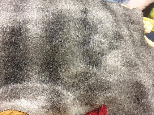 Grey fox from crscraft 55x105cm