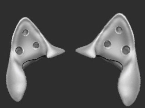 3d Printed Canine Ears