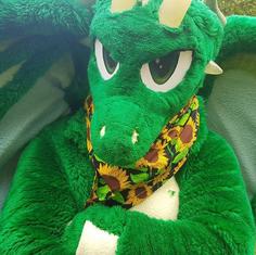 Jett dragon full fursuit fullsuit digitigrade Furry Tailor Mipsy toony horns