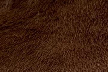 Chocolate Howl Teddy - Half Yard Piece