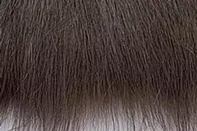 Dark Truffle Grey Howl Fox - Half Yard Piece