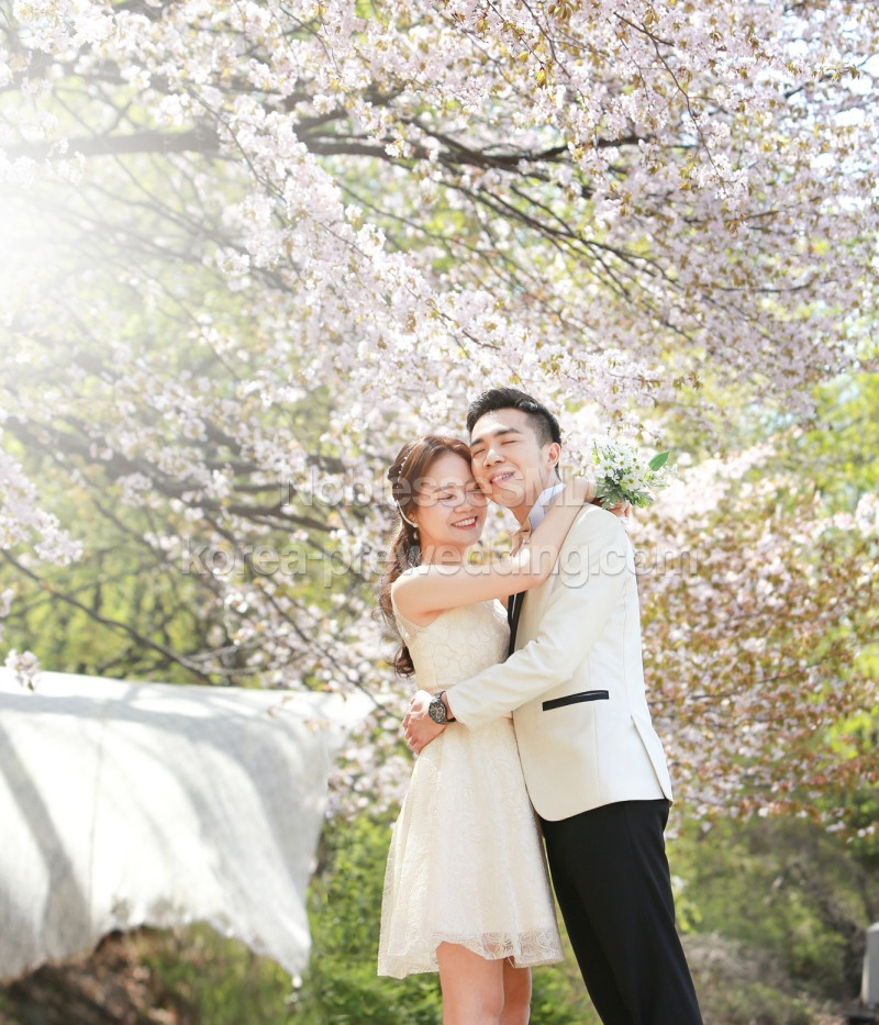 korea prewedding review - noblessesmd67.