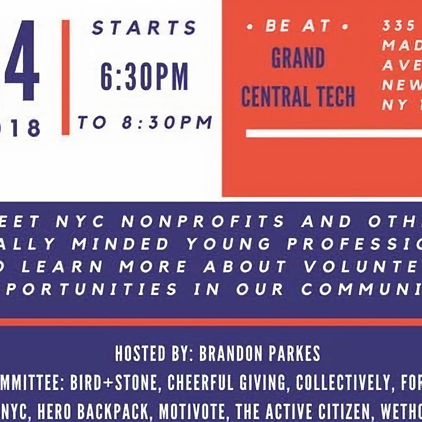 NYC Young Professional Volunteer Fair