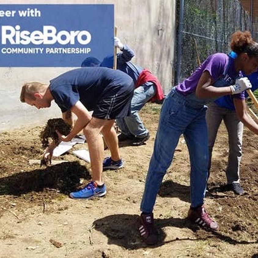 Volunteer with RiseBoro