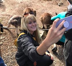 Selfies with kangaroos