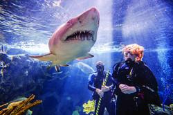 FL Aquarium (Tampa)