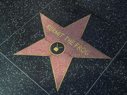 s_hollywood-stars-kermit-the-frog