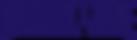 ShowtimeBasketball_WORDMARK_XL Blue.png