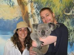 Koala-hold.jpg