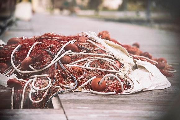Mullet Fishnets
