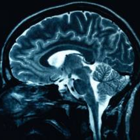 10 ways to Maintain Your Brain© from The National Alzheimer's Association