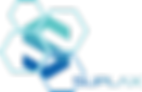 Suplax_logo_color.png