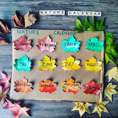 Seasons & Months