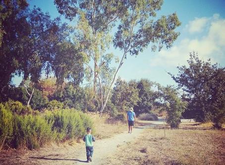 Nature Hike