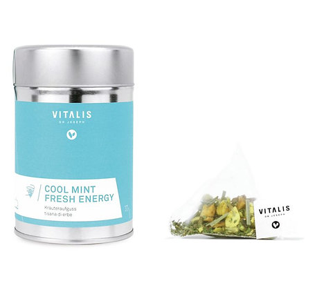 Cool Mint Fresh Energy 12 Pyramid Filter, 30g - 1 Dose