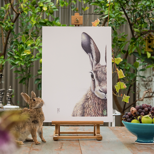Forest Hare - Large Format