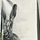 Thumbnail: Moon Hare: Single-colour Art Print Tea Towel
