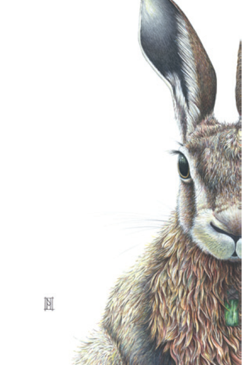Forest Hare Card
