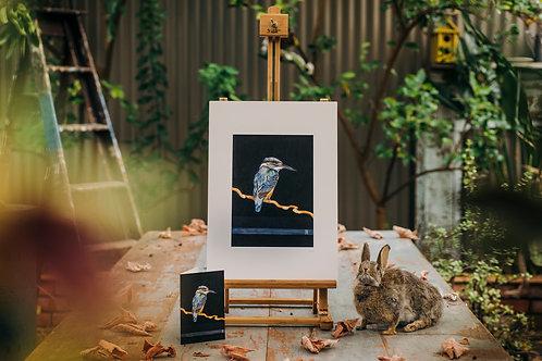 Kingfisher   A3