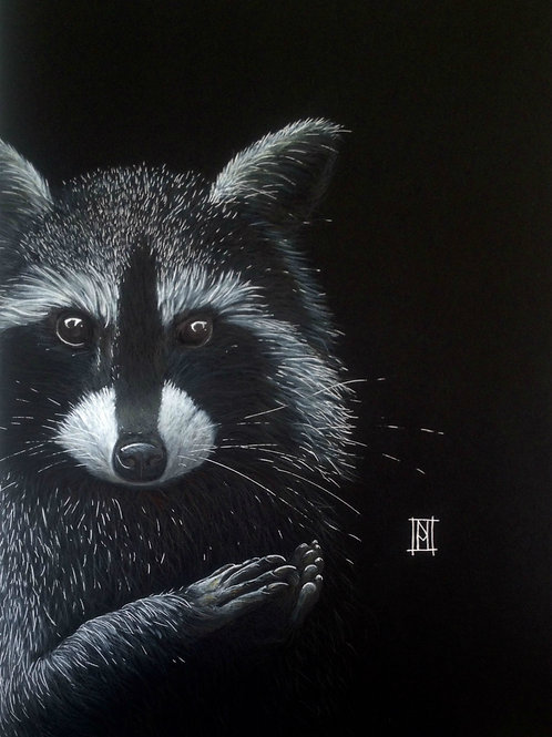 Raccoon Mini Card