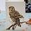 Thumbnail: Morepork Mini Card