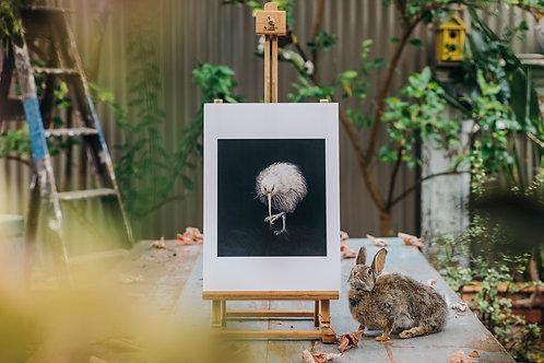 White Kiwi   A3