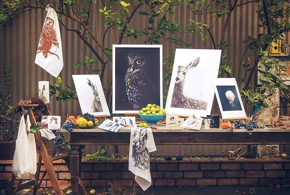 Wild Grey Fox New Zealand artist