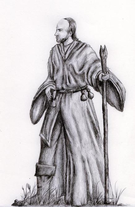 Warrior Druid
