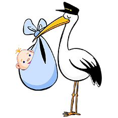 cartoon-baby-bird-1.png