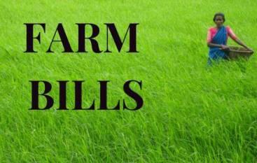An Overview on Farm Bills, 2020