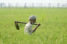 A farmers plight: The three farmer's Act 2020