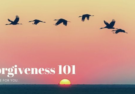 Forgiveness 101