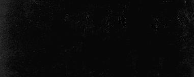 Meio-tom Imagem do Crowd
