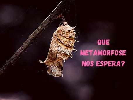 Que Metamorfose Nos Espera?
